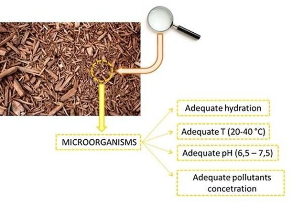 Biofiltration, requirements for the bed