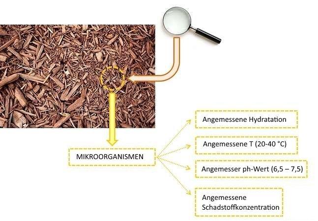 Biofiltration, Anforderungen an das Filterbett