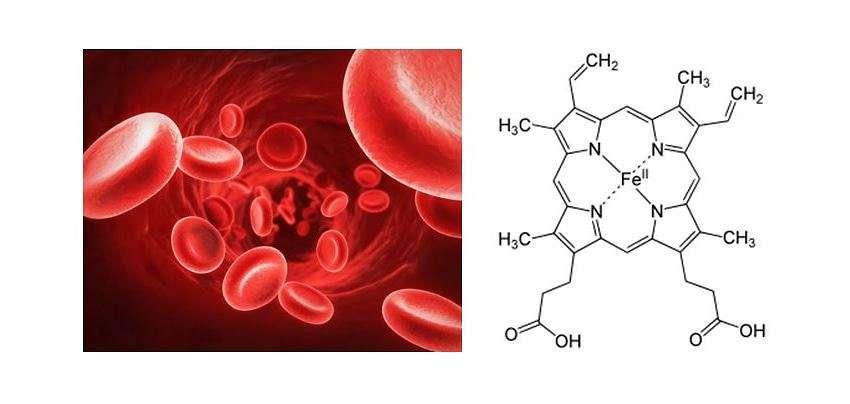 Monossido di carbonio ed emoglobina: un rapporto troppo stretto!