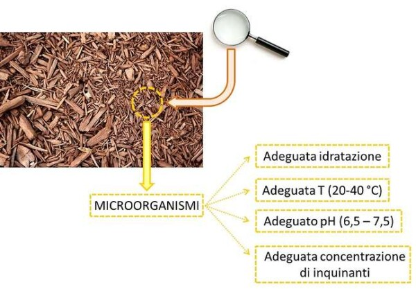 Biofiltrazione, requisiti per il letto filtrante