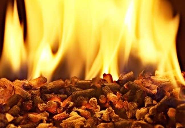 Combustione biomasse legnose